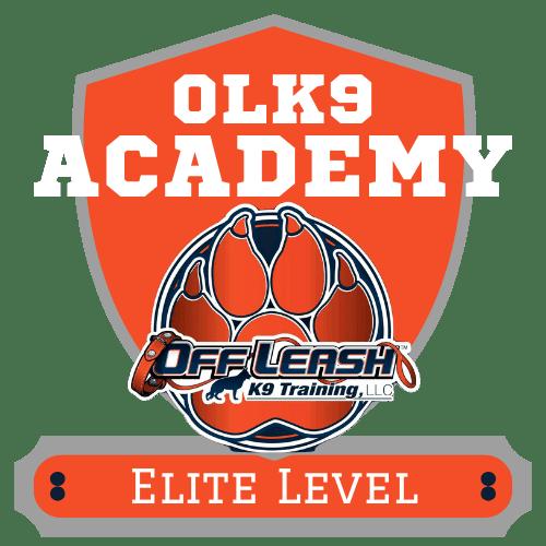 Off Leash K9 Training Of Oklahoma Dog Obedience Training Behavior Modification